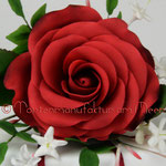 dunkelrote Rose