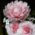 Pfingstrose und Rosen