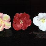 Übungsblüten
