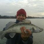 Markus Gintenreiter, Dezember 2013, 49cm (Donau)