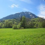 C'est très vert la Savoie