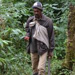 Waldarbeiter mit wilder Korarimafrucht