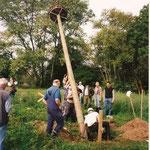 15.8.2000  der erste Storchenmast wird aufgebaut.--         NABU-Foto