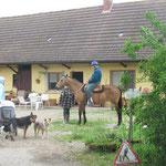 Letzte instruktionen :-) Irina, Rachelle und die Hunde warten schon ungeduldig!