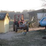 Zuerst werden die ganzen Bäume mit dem Traktor nach Hause gezogen.