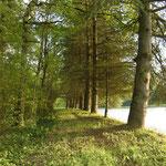 Maja's Velotour an die nahe gelegenen Seen
