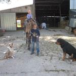 Flurina will nicht nur mit den Ponies spazieren, nein natürlich wird auch auf den grossen Pferden geritten.