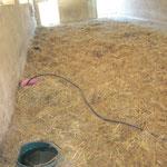 Die Eimer sind im Stroh eingebettet, damit das Wasser weniger schnell einfriert.