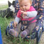 zersch die lange gräsli