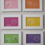 Pusteblumenmotive - Zeichnungen mit Künstlerfarbstiften, gerahmt - Einige dieser Bilder haben bereits ein neues Zuhause gefunden