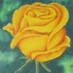 """""""Gelbe Rose"""" -Zeichnung mit Künstlerfarbstiften (ca. 11 x 16 cm)"""