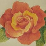 """""""Orangefarbene Rose"""" - Zeichnung mit Künstlerfarbstiften (ca. 15 x 21 cm)"""