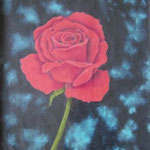 """""""Rose"""" - Zeichnung mit Künstlerfarbstiften (ca. 15 x 21 cm)"""
