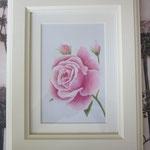 """""""Rose mit Knospen"""" - gerahmte Zeichnung mit Künstlerfarbstiften (ca. 13 x 18 cm)"""
