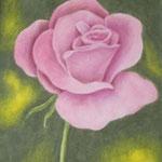"""""""Rosafarbene Rose"""" - Zeichnung mit Künstlerfarbstiften (ca. 11 x 16 cm)"""