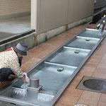 富山の名水 「清水(しょうず)」