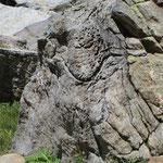 Auch Steine lachen / Eggerofe / Binntal