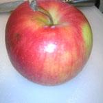 南大阪部隊長・@89matsunoさん持参の無肥料・無農薬の貴重なリンゴ