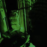 竹香と仏像