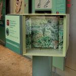 Tarnungsmodell: Auf Knopfdruck bewegen sich verschiedene Tigermodelle über den Hintergrund, um die Tarnungsvorteile der Tigerstreifen zu demonstrieren.