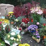 ein Blumenmeer für Karla