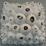 Barnacle Wall Piece (Square)