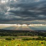 Untergehende Sonne über Ettenheim