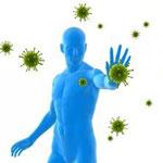 Immunité et HE