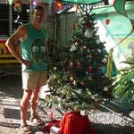 A l'entrée ... le sapin de Noël