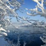 樹氷の空知川【富良野市】