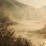 朝靄の空知川【富良野市】