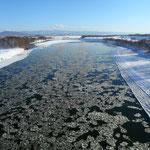 砕氷流れる石狩川【新十津川町】