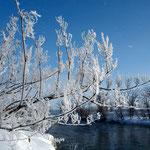 樹氷の朝 美瑛川【旭川市】