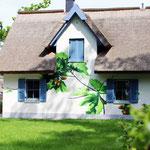 Hausfassade Ferienhaus Ostsee Nummer 2