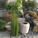 Natursteintrog im Japangarten.