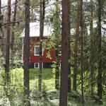 Das Häuschen liegt einsam mitten im Wald