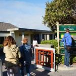 ケープペンギンのコロニー:ボルダーズ・ビーチの入口