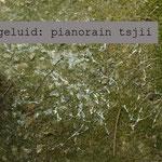 pianorain tsjii