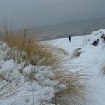 Die Schaabe im Schnee