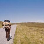 Per Anhalter oder wenn kein Auto kommt, zu Fuß durchs Hochland