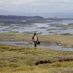 Wanderer über tausend Inseln und Seen...