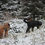 Olinas erster Schnee mit Mama Isny 26.12.2014