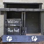 Hundehütte ab der 4.Woche (16.05.2014)