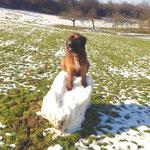 Hab den letzten Schnee beseitigt, jetzt kann der Frühling kommen 2015