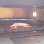 Was wurde denn da in den Ofen geschmuggelt? Nebst Plastik unser 2. Fremdkörper an diesem Wochenende!