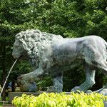 Львиный каскад: у крыльев колоннады установлены два бронзовых льва, из пастей которых вырываются водный струи.