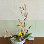 Yunaさんの作品です。作品を見ていると桜の大木に風がそよいでいるようです。
