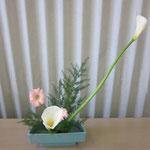 花材/カラー② ガーベラ② アスパラ