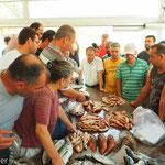 Fischauktion in Teos