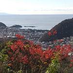 12月20日 飯田博茂撮影 仙元山ハイキングコース